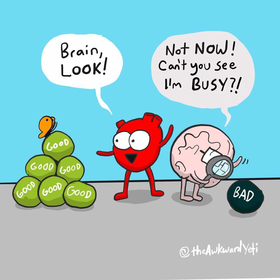 Biais de négativité : la tendance du cerveau à se focaliser et à prioriser des informations négatives, et ce même si autant ou plus d'informations positives sont présentes