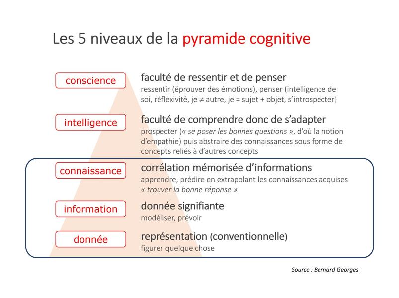 Pyramide cognitive de Bernard Georges